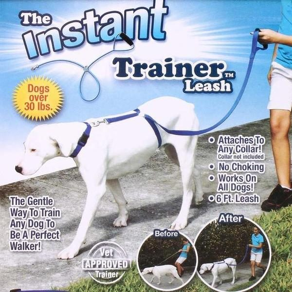 the instant